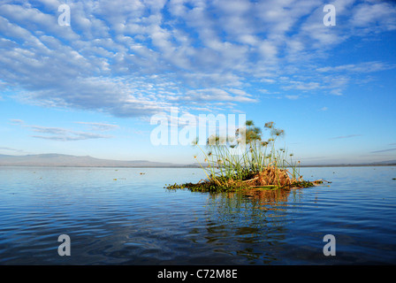 Lake Naivasha, Rift valley, Kenya - Stock Photo
