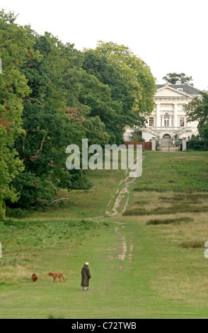 ... A man walks his dogs in the path leading to the White Lodge in Richmond  Park