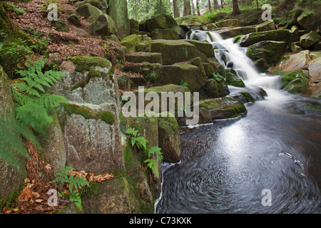 Waterfalls, Ilse mountain stream flowing over mossy rocks, Heinrich Heine walking trail, Harz Mountains, Saxony - Stock Photo