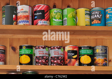 Tins of food on shelves in a kitchen UK - Stock Photo