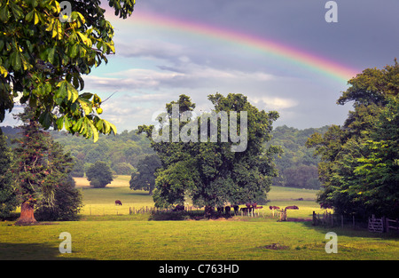 English countryside with rainbow - Stock Photo