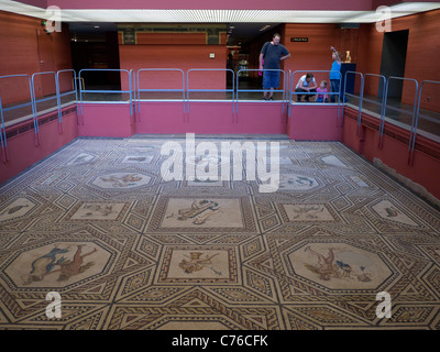 Dionysus mosaic at the Roman-Germanic Museum in Cologne Germany - Stock Photo
