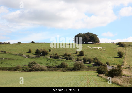 Hackpen Hill, White Chalk Horse, Wiltshire, England - Stock Photo