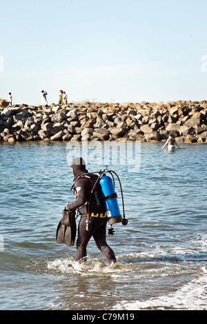 scuba diver in wetsuit wades into chilly water behind stone jetty carrying flippers Edmonds beach Washington Pacific - Stock Photo