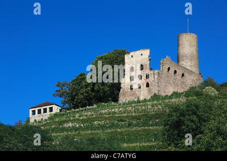 Burgruine Strahlenburg auf dem Oelberg in Schriesheim, Bergstrasse, Oberrheinische Tiefebene, Odenwald, Baden-Wuerttemberg - Stock Photo