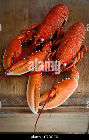 Two whole ready boiled lobsters on wooden kitchen chopping board - Stock Photo