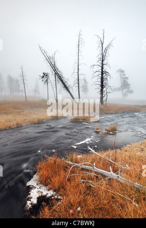 Thermal spring meandering through an autumn colored meadow, Firehole Lake Drive, Yellowstone National Park, Wyoming, - Stock Photo