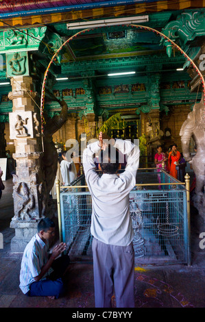 Aman praying at the Meenakshi Amman temple in Madurai, Tamil Nadu, India. - Stock Photo