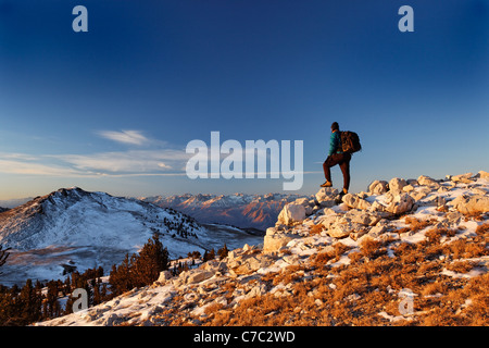 Male hiker in White Mountains at sunrise (Sierra Mountains in background), Inyo National Forest, White Mountains, - Stock Photo