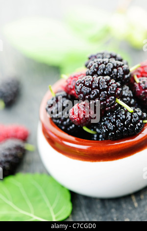 Ripe mulberry berries in a bowl, freshly picked - Stock Photo