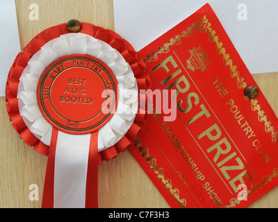 A certificate and rosette from the rare poultry society - Stock Photo