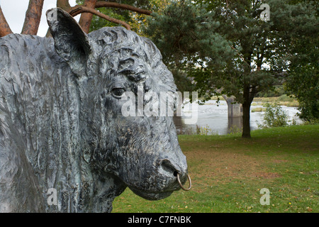 Welsh Black bull statue close up, Builth Wells Powys Wales UK. - Stock Photo