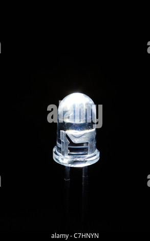 White LED - Stock Photo