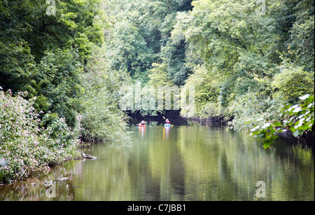 The River Tivy Cilgerran West Wales UK - Stock Photo