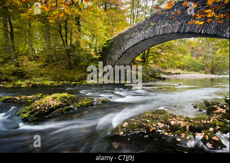 Stone footbridge over a small river in Autumn, Lake District, England, UK - Stock Photo