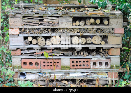 Bug home made with old pallet to attract beneficial insects into a garden - Stock Photo