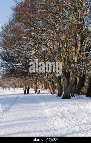 Couple (man woman) walking on snow-covered tree-lined path, scenic urban park on snowy winter day - Riverside Gardens, - Stock Photo
