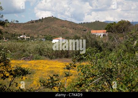 Portugal, Algarve, Near Silves, Countryside - Stock Photo