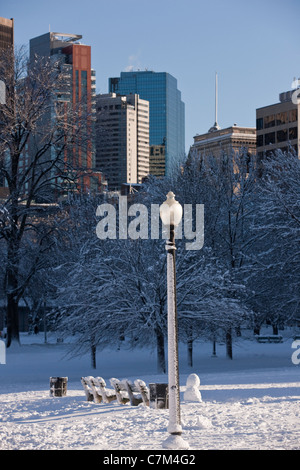 Lamppost in a public park with city in the background, Boston Common, Boston, Massachusetts, USA