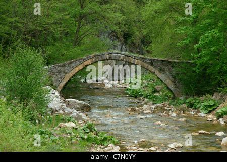 Old Roman bridge in the mountain Rodopi, Bulgaria - Stock Photo