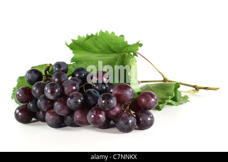 red grapes with vine tendril on a white background - Stock Photo