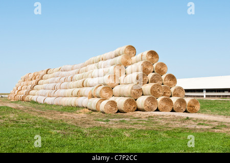 Alfalfa in round bales are stacked for storage at the edge of a farmyard in South Dakota. - Stock Photo
