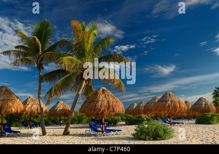Empty Mayan Riviera beach lounge chairs with thatched umbrellas and coconut palm trees Mexico - Stock Photo