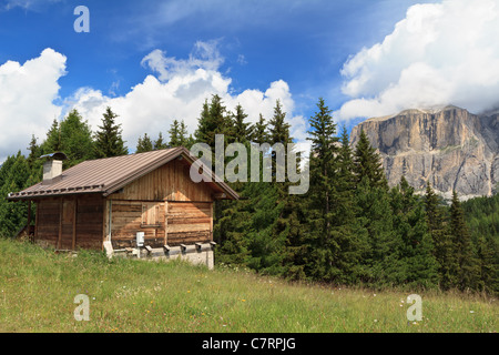 summer landscape in Fassa valley with a small barn, Italian Dolomites - Stock Photo