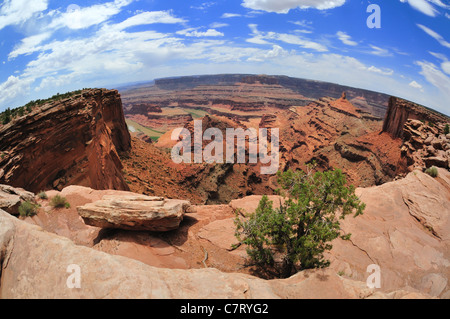 Panoramic fisheye view of eroded cliffs and other formations from an overlook in Dead Horse Point State Park near - Stock Photo