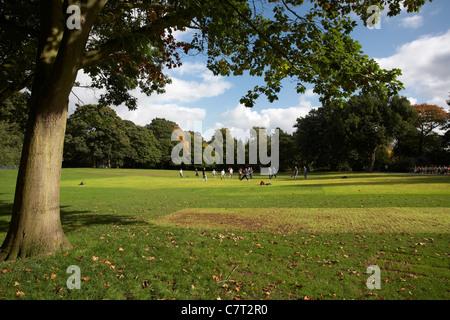 Botanic Gardens, Belfast, Northern Ireland, UK. - Stock Photo