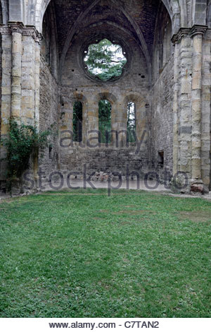 grass growing inside the remains of an old church - Stock Photo