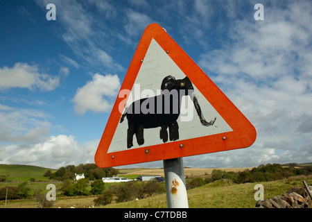 Road sign in countryside with creative artwork graffiti elephant painted on it near New Luce Galloway Scotland UK - Stock Photo
