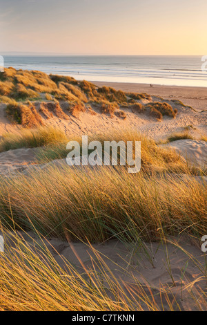 Saunton Sands from Braunton Burrows on a summer evening, Devon, England. Summer (June) 2011. - Stock Photo