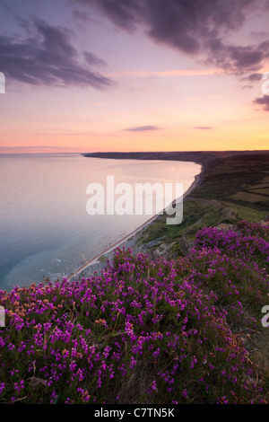 Twilight from Golden Cap, looking west over the Dorset Coast. Summer (July) 2011. - Stock Photo