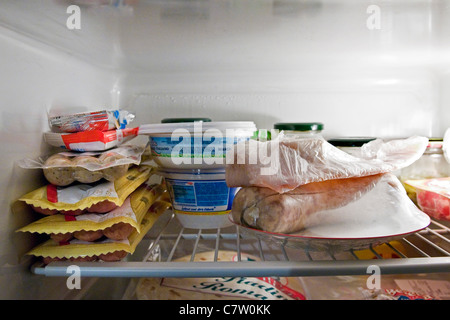 Assorted food in refrigerator - Stock Photo