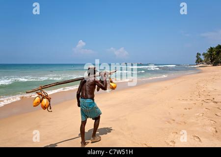 Coconuts seller. Hikkaduwa beach. Sri Lanka - Stock Photo