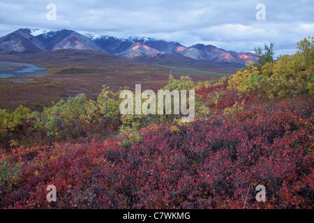 Fall colors in Polychrome Pass, Denali National Park, Alaska. - Stock Photo