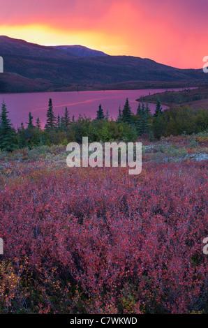 Sunset over Wonder Lake, Denali National Park, Alaska. - Stock Photo