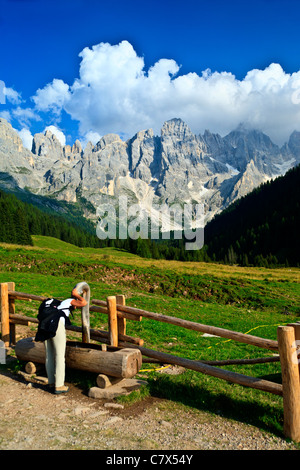 Nature Park Paneveggio Pale di San Martino Dolomites Italy - Stock Photo