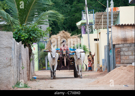 Indian bullock cart and driver transporting crops through a rural indian village.  Andhra Pradesh, India - Stock Photo