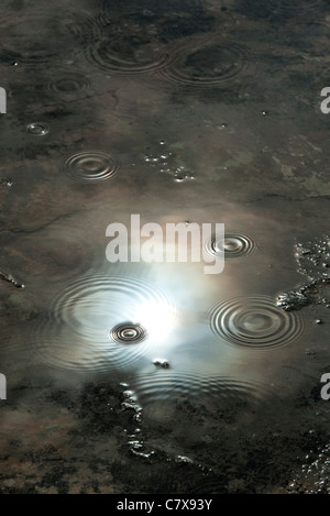 Raindrops in puddle reflecting dark moody stormy sky. India - Stock Photo