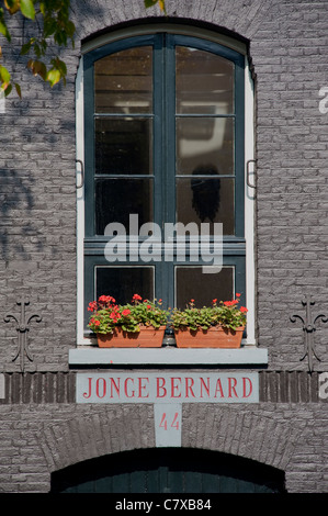 Traditional window in Amsterdam - Stock Photo