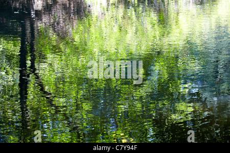 Water Reflections River Mole Boxhill Surrey UK - Stock Photo