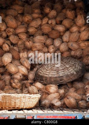 Indian truck full of coconuts. Andhra Pradesh, India - Stock Photo