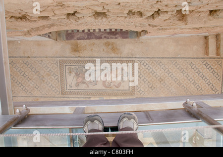 Turkey, Ephesus, Terrace Houses. View of ancient ornate mosaic floor with image of Poseidon from overhead museum - Stock Photo
