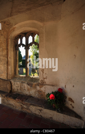 A red flowering plant left in the porch of the church of St Mary Magdalene at Wiggenhall St Mary Magdalen, Norfolk. - Stock Photo
