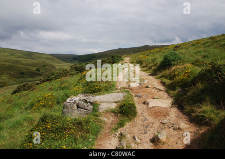 path leading to Wistman's Wood, Longaford Tor and Higher White Tor, Devon UK - Stock Photo