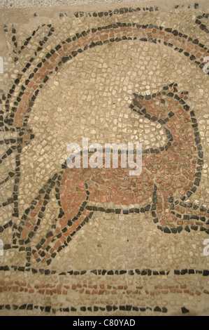 Early Christian Mosaic 6th Century Baptistery Of St John Naples