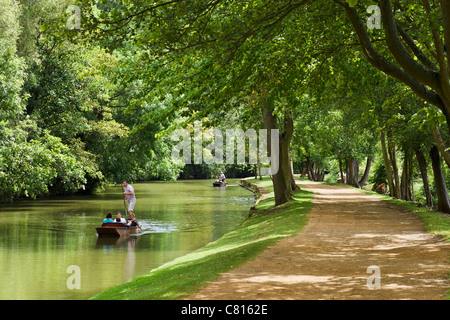 Punting on the River Cherwell near Christ Church Meadow, Oxford, Oxfordshire, England, UK - Stock Photo