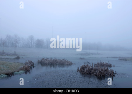 Winter morning in Denmark - Stock Photo